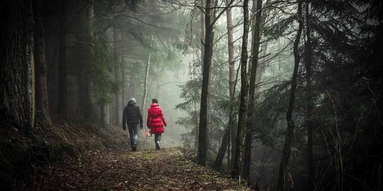 Van wandelen word je vrolijk.
